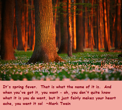 65 Spring Quotes and Sayings with Images - Good Morning Quote