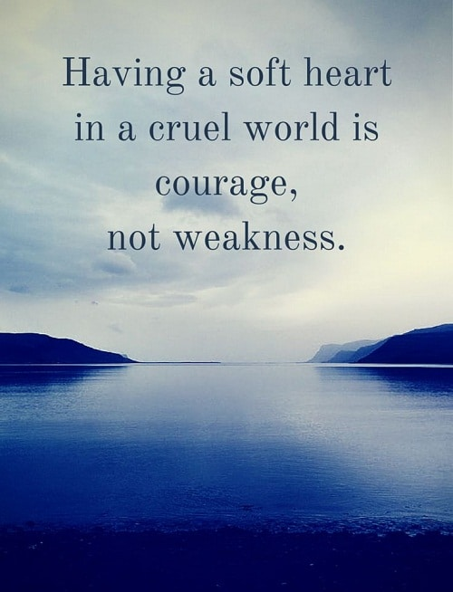 Soft Heart Amazing Quotes