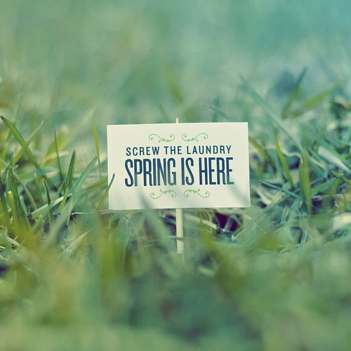 Spring Quotes with Pictures