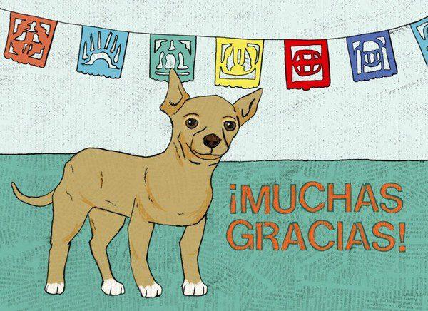 Chihuahua-Muchas Gracias