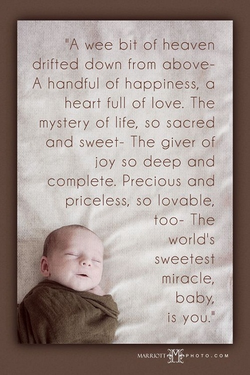 Heaven Drifted Down Baby Quotes