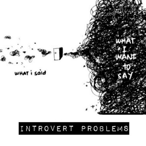 Introvert Problems Struggle Quotes
