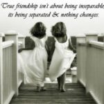 37 True Friends Quotes and Sayings with Images