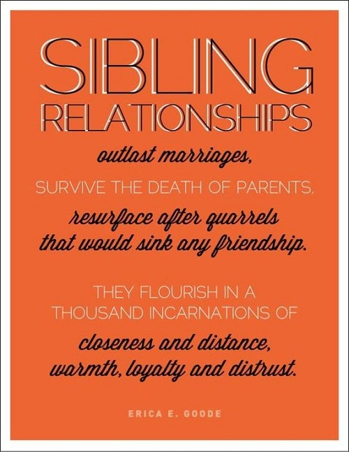 Sibling Relationship Brother Quotes