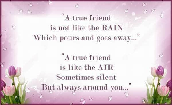 True Friendship Quote