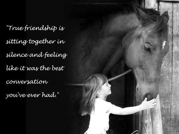 Unique True Friends Quotes