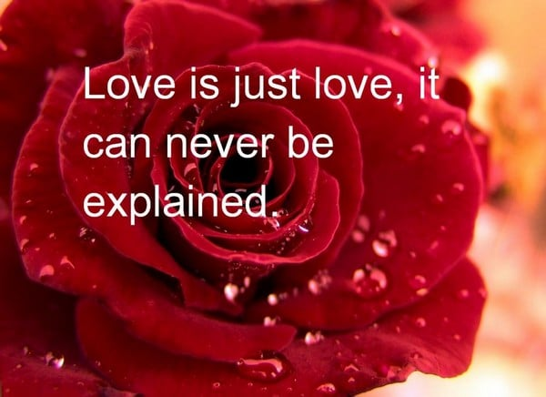 Wise Sayings About Love