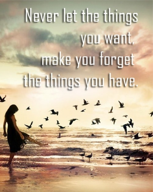 Things You have Lovely Quotes