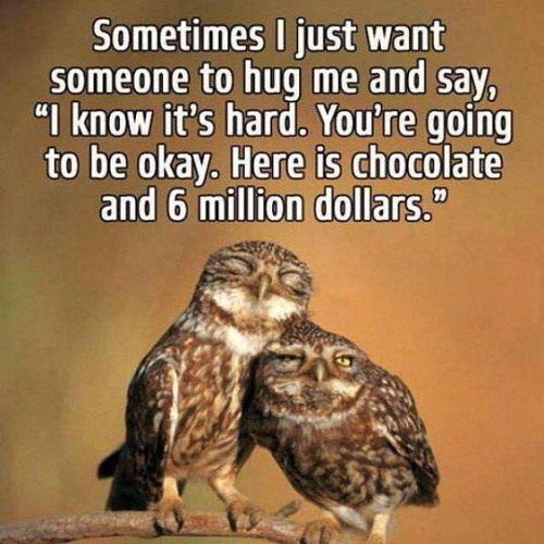 sometimes i just want someone to hug me and say chocolate and dollar funny good morning quotes