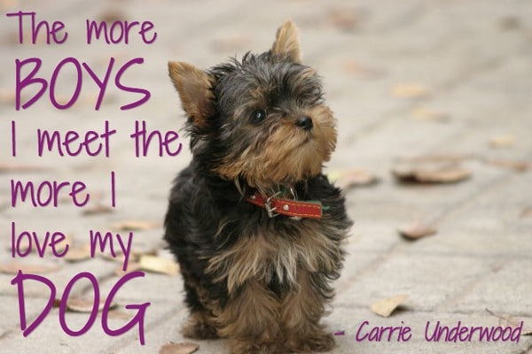 Nice Dog Quotes
