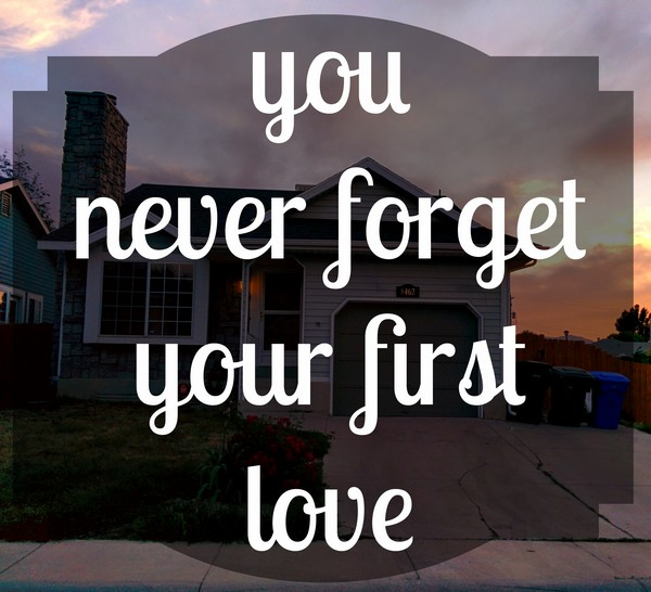 A Millionaire'S First Love Quotes