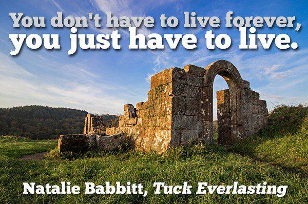 Alice In Wonderland Book Quotes