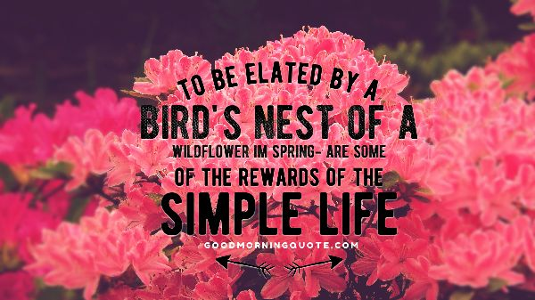 Birds And Spring Quotes