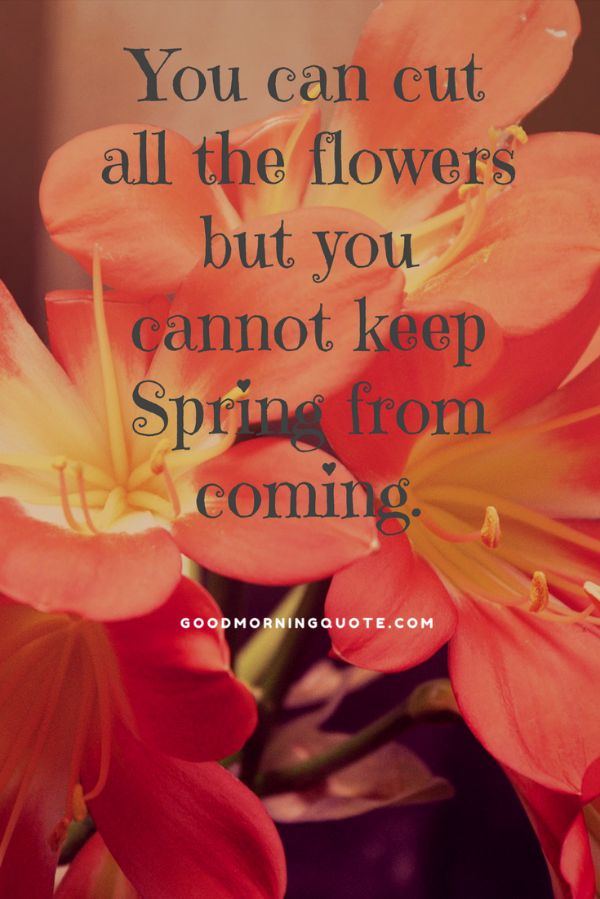 Cant Wait For Spring Quotes