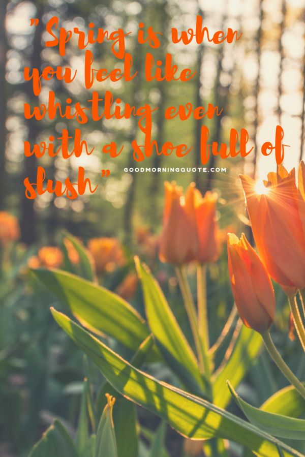 Catchy Spring Quotes