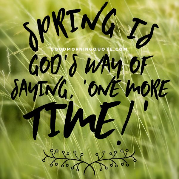 Spring Quotes Cool 48 Spring Quotes And Sayings With Images Good Morning Quote