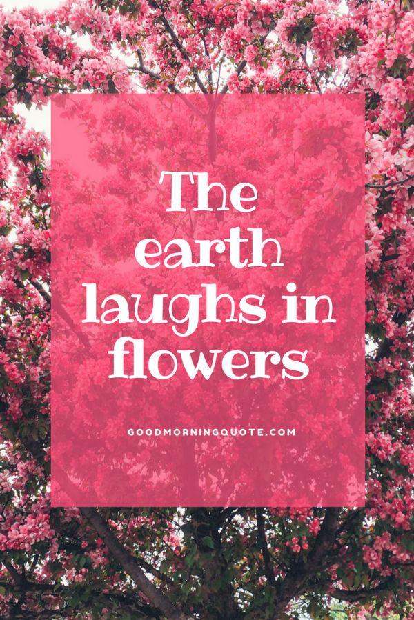 65 spring quotes and sayings with images good morning quote the earth laughs in flowers funny spring quotes mightylinksfo