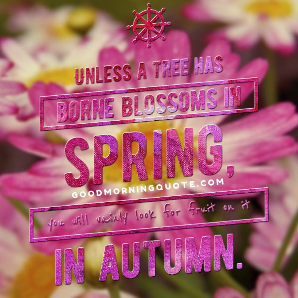 Love Spring Quotes