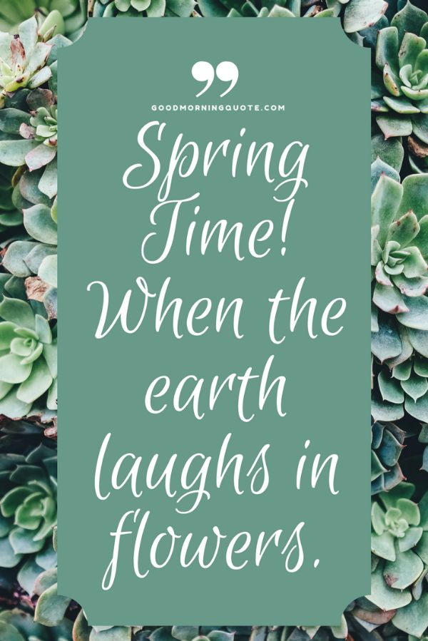 Morning Spring Quotes