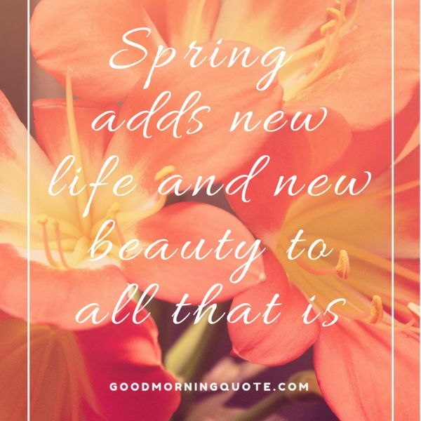 New Beginning Spring Quotes