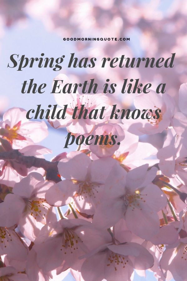 65 spring quotes and sayings with images good morning quote spring has returned the earth is like a child that knows poems quirky spring quotes mightylinksfo