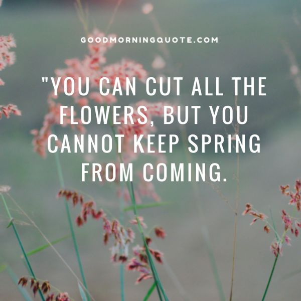 Ready For Spring Quotes