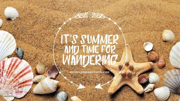 Summer Adventure Quotes