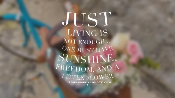Summer Flower Quotes