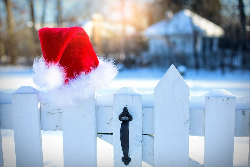 holiday survival guide, holiday survival, how to survive the holidays