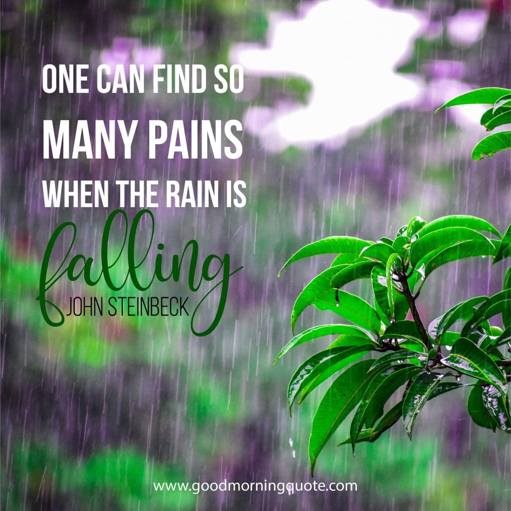 Rainy Day Quotes And Sayings To Brighten Your Day