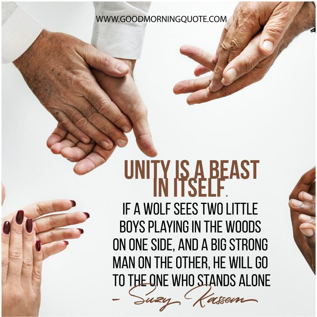 unity quotes, diversity quotes, teamwork quotes, team quotes,